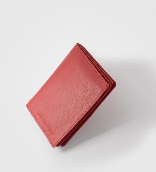 etui-za-dokumente-in-kartice-palantino-rdec